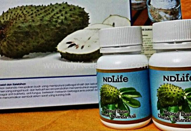 kapsul daun durian belanda 2